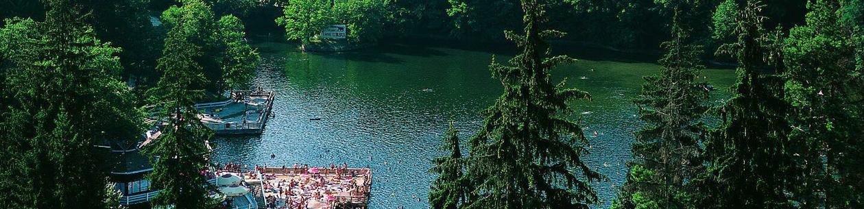Medve-tó